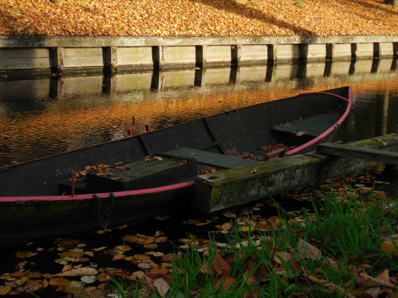 bootje in Edam, herfst