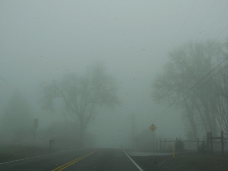 Photo of a foggy road